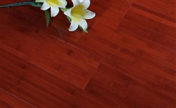 stained bamboo flooring