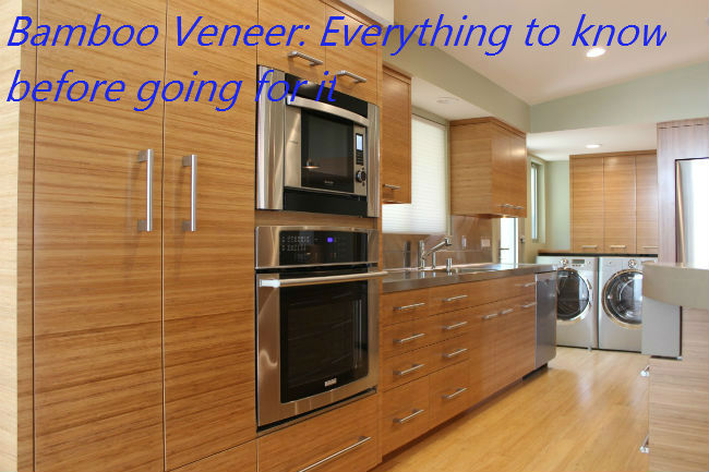 Bamboo Veneer: Everything to Know Before Going For It